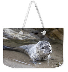 Out For A Swim Weekender Tote Bag by David Millenheft