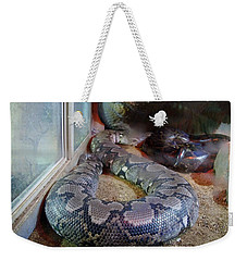 Out Of Africa  Black Snake Weekender Tote Bag