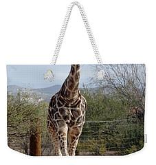Out Of Africa  Giraffe 1 Weekender Tote Bag