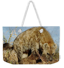 Out Of Africa Hyena 1 Weekender Tote Bag