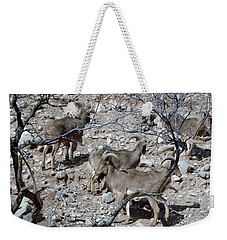 Out Of Africa  Mountain Goats Weekender Tote Bag