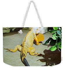 Out Of Africa Orange Lizard 2  Weekender Tote Bag