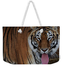 Out Of Africa  Tiger 2 Weekender Tote Bag