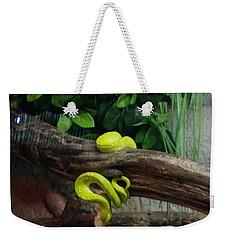 Out Of Africa Tree Snake Weekender Tote Bag