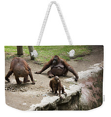 Weekender Tote Bag featuring the photograph Out Of Reach by Lynn Palmer