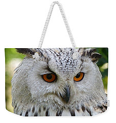 Weekender Tote Bag featuring the photograph Owl Bird Animal Eagle Owl by Paul Fearn