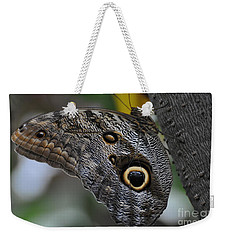 Weekender Tote Bag featuring the photograph Owl Butterfly by Bianca Nadeau