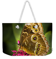 Owl Butterfly With A Hat Weekender Tote Bag