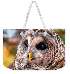 Owl Gaze Weekender Tote Bag by Adam Olsen