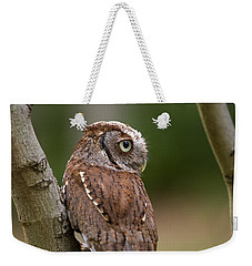 Pablo The Screech Owl Weekender Tote Bag
