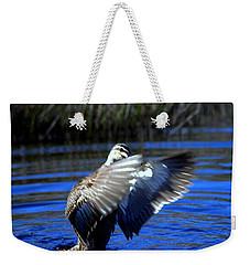 Weekender Tote Bag featuring the photograph Pacific Black Duck by Miroslava Jurcik