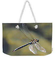 Weekender Tote Bag featuring the photograph Paddletail Darner In Flight by Vivian Christopher