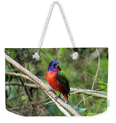Weekender Tote Bag featuring the photograph Painted Bunting Photo by Meg Rousher