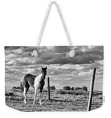 Painted Pony Weekender Tote Bag