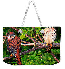 Weekender Tote Bag featuring the photograph Caribbean Falcons by The Art of Alice Terrill