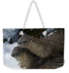 Pair Of River Otters   #1301 Weekender Tote Bag