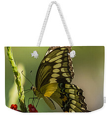 Weekender Tote Bag featuring the photograph Palamedes Swallowtail by Jane Luxton