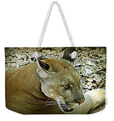 Weekender Tote Bag featuring the photograph Panther by Debra Forand