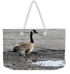 Weekender Tote Bag featuring the photograph Parking Lot Attendant by Michael Krek