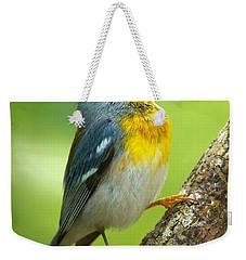 Parula Song Weekender Tote Bag by David Beebe