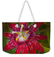 Weekender Tote Bag featuring the photograph Passion Flower by Jane Luxton