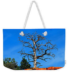 Weekender Tote Bag featuring the photograph Past Prime by Greg Norrell