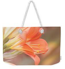 Pastels Weekender Tote Bag
