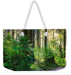 Pathway Into The Light Weekender Tote Bag