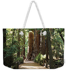 Pathways Weekender Tote Bag