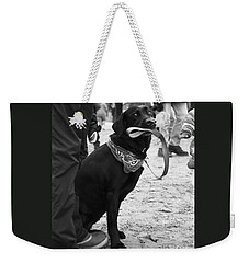 Weekender Tote Bag featuring the photograph Patience by PJ Boylan