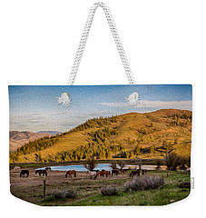 Patterson Mountain Afternoon View Weekender Tote Bag