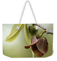 Pawpaw - Spring Delight Weekender Tote Bag by Jane Eleanor Nicholas