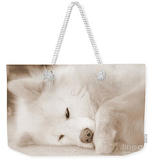 Pawsome Weekender Tote Bag by Fiona Kennard