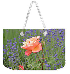 Peach Roses In A Lavender Field Of Flowers Weekender Tote Bag