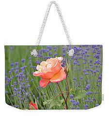 Peach Roses In A Lavender Field Of Flowers Weekender Tote Bag by P S