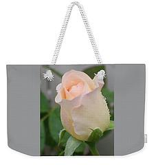 Weekender Tote Bag featuring the photograph Fragile Peach Rose Bud by Belinda Lee