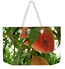 Weekender Tote Bag featuring the photograph Peaches On The Tree by Kerri Mortenson