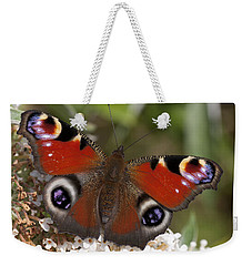 Peacock Butterfly Weekender Tote Bag by Richard Thomas