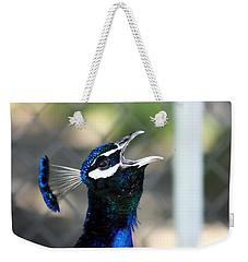 Peacock Calling Weekender Tote Bag
