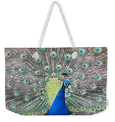 Weekender Tote Bag featuring the photograph Peacock by Caryl J Bohn