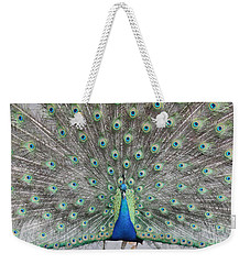 Weekender Tote Bag featuring the photograph Peacock by John Telfer