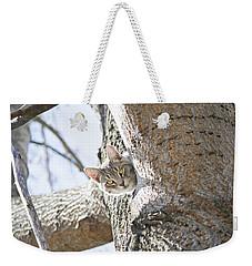 Peaking Cat Weekender Tote Bag