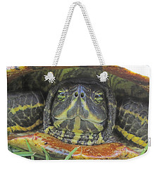 Weekender Tote Bag featuring the photograph Peek A Boo by Judith Morris