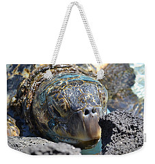 Peek-a-boo Turtle Weekender Tote Bag