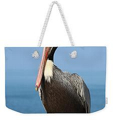 Pelican - 3  Weekender Tote Bag