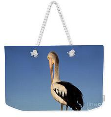 Pelican Alone Weekender Tote Bag