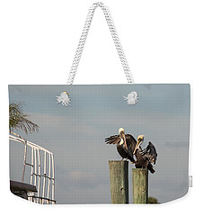 Weekender Tote Bag featuring the photograph Pelican Buddies by John M Bailey