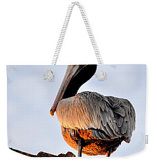 Weekender Tote Bag featuring the photograph Pelican Looking Back by AJ  Schibig