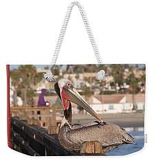 Pelican Sitting On Pier  Weekender Tote Bag