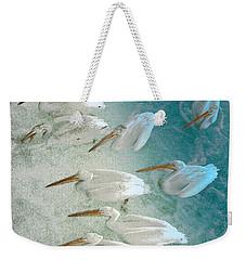 Pellican Frenzy Weekender Tote Bag by Stuart Turnbull
